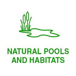 NATURAL-POOLS-AND-HABITATS