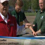 Campo di Ascona: campo allenamento Nazionale Tedesca